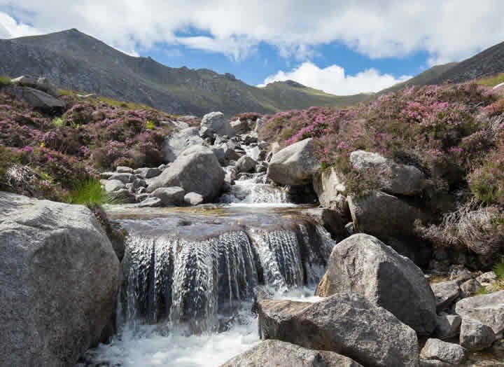 DAY TRIPS TO ARRAN & ARGYLL